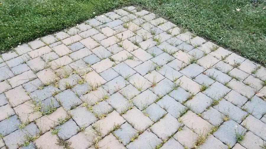 5 Ways to Prevent Weed Growth Between Paving Stones