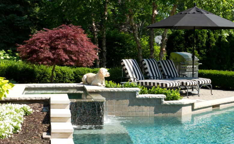 Choose Natural Stones When You Are Going to Create Swimming Pool