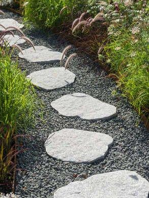 Path with Mix (Crushed and Whole) Stones