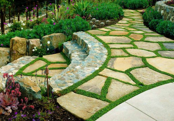 Grass Filled Path with Large Stones