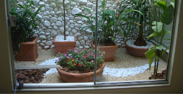 Natural pebble stones in the Plant Pots