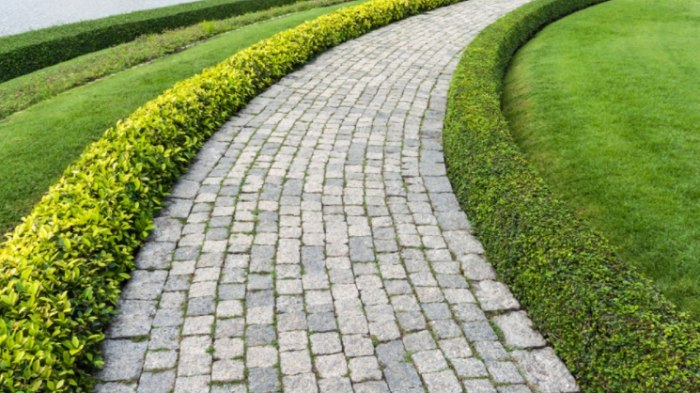 Pavers for Pathway