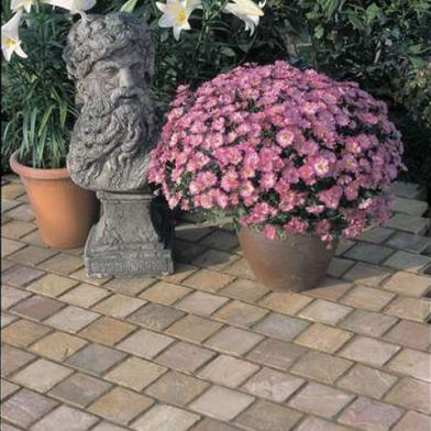 Time Worn Stone Exterior Paving Collection
